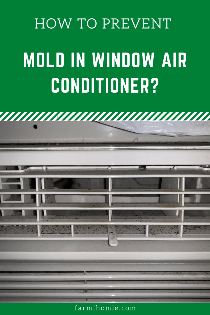 How to Prevent Mold in Window Air Conditioner