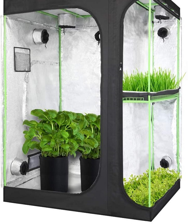 an indoor grow tent for Microgreens