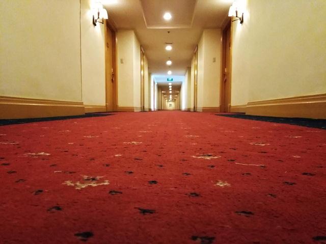 carpet removal service